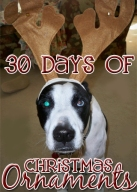 30 Days Christmas Ornaments
