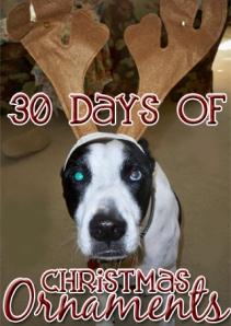 30 Days Christmas Ornaments
