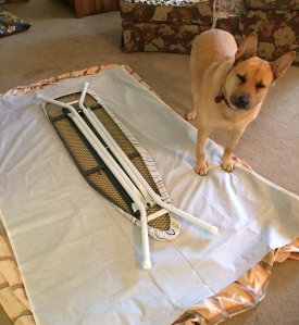 Ellie helping with ironing board