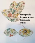 Glue petals in pairs across from each other