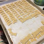 Homemade Dog Biscuit Before