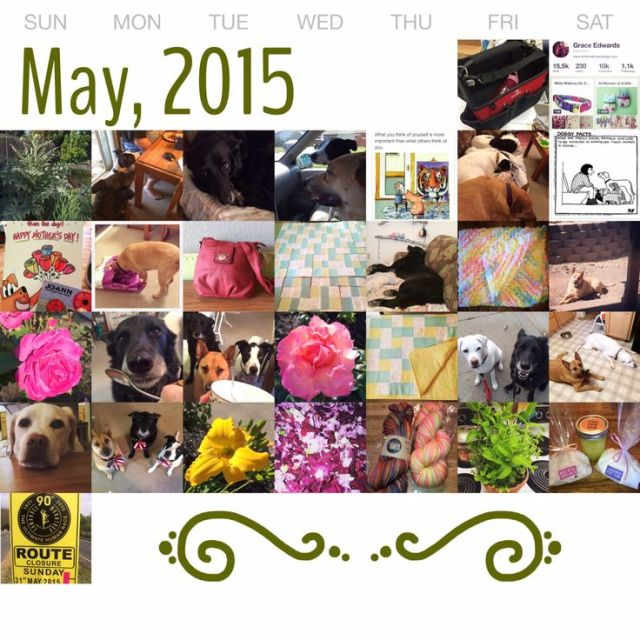 May in Pictures