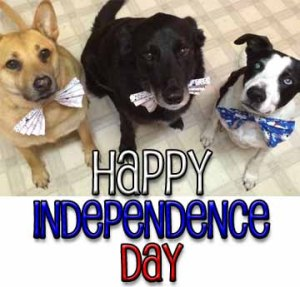 Happy Independence Day2