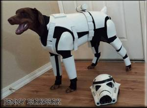Star Wars Dog